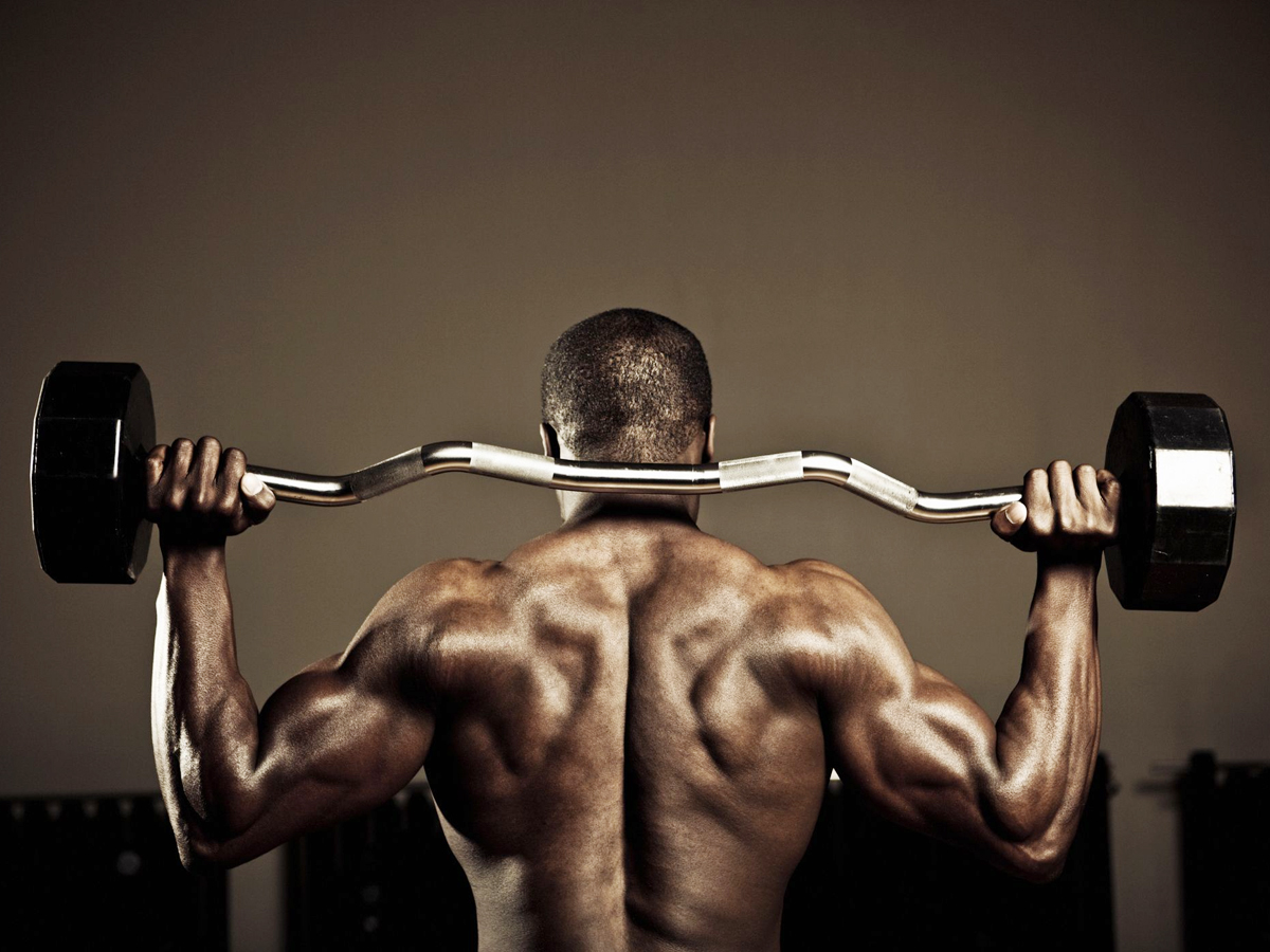 Building Muscles