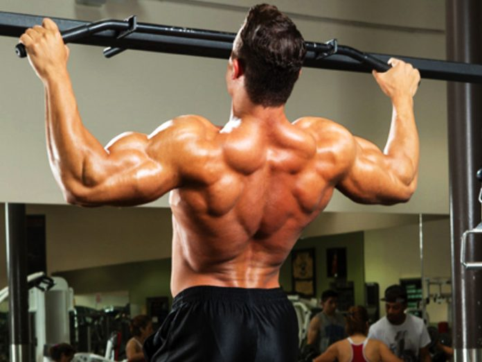 6 Best Exercises For Building a Strong Back