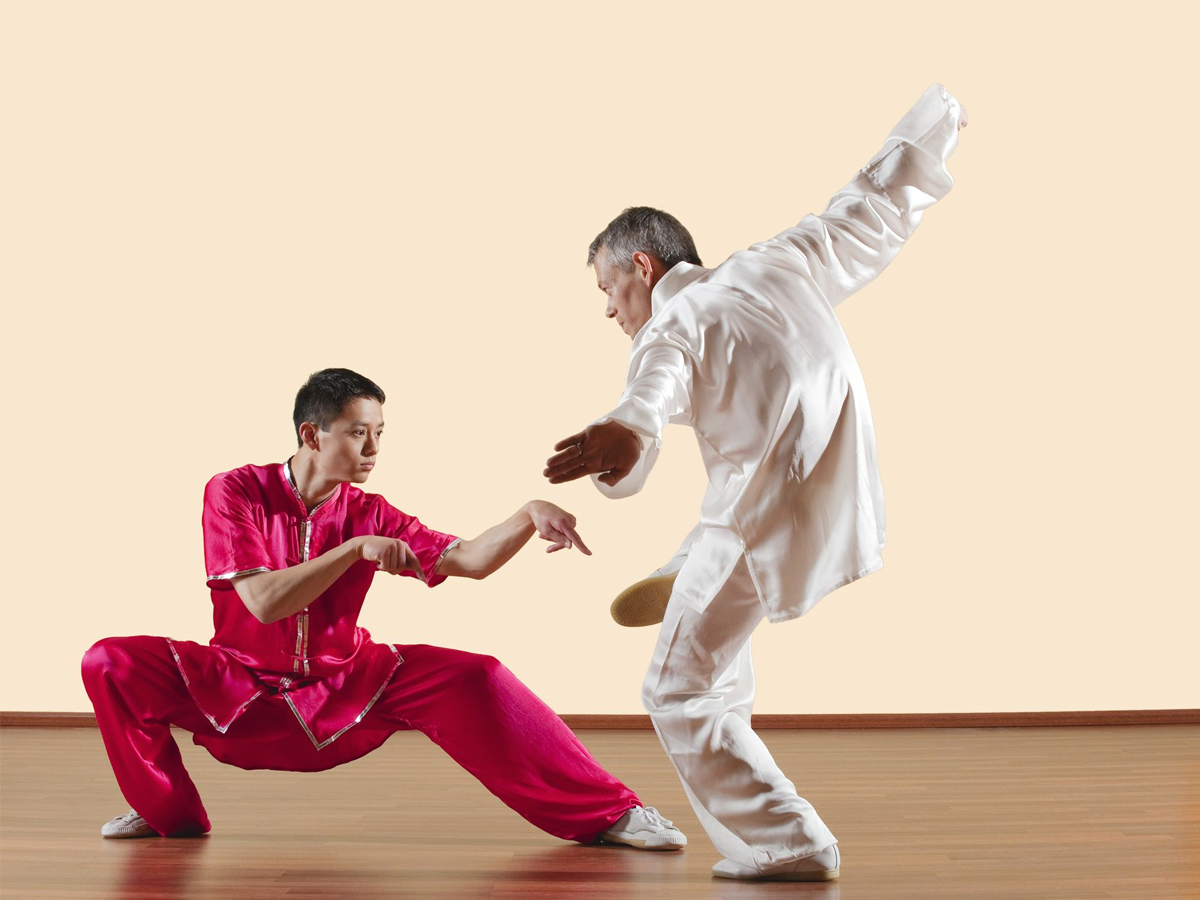 master and student practicing monkey style