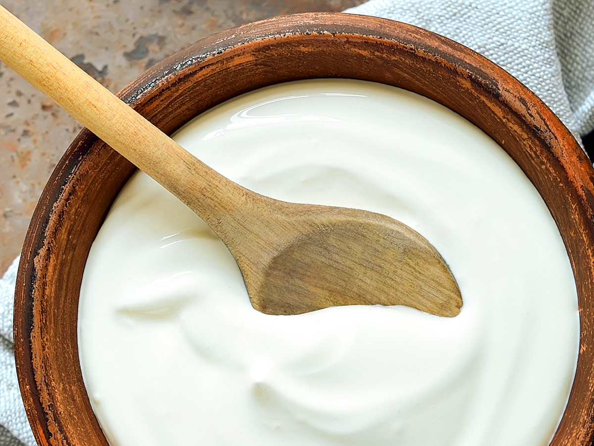 Yogurt or Curd, a healthy indian diet