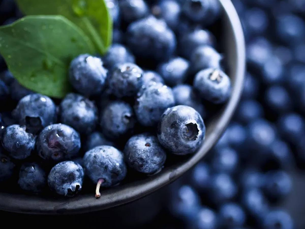 carbs in blueberries